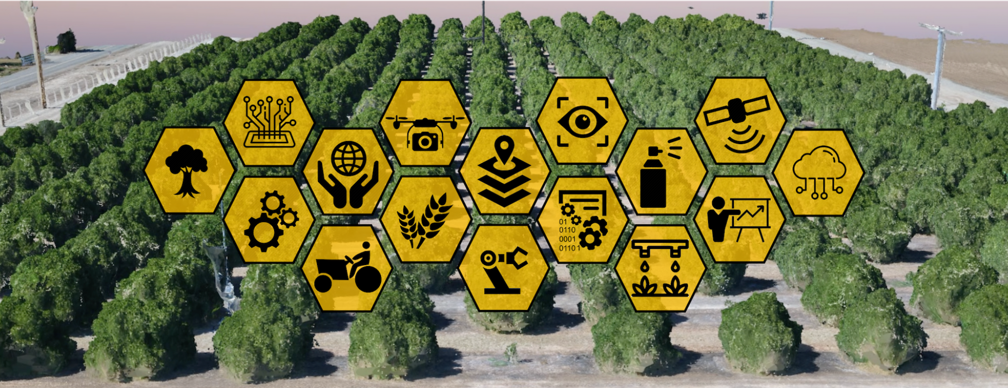 Virtual Orchard Digital Agriculture UC Davis Alireza Pourreza Biological and Agricultural Engineering