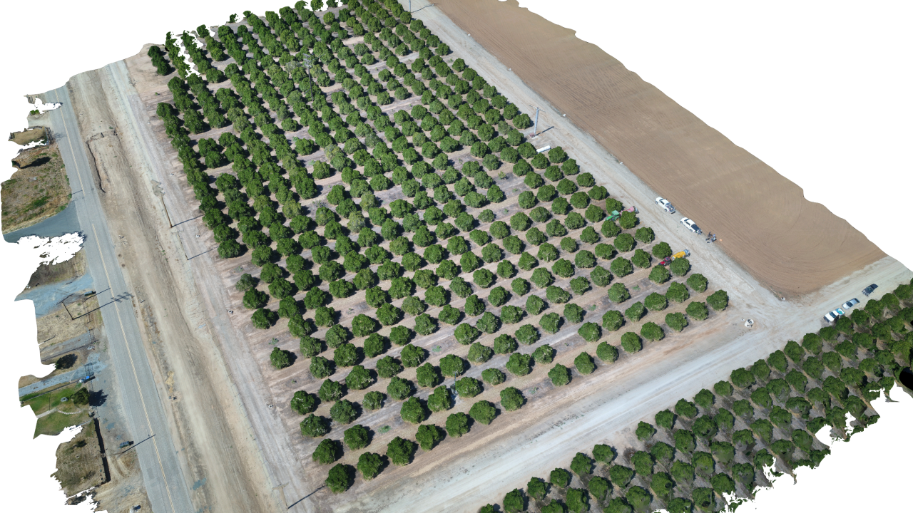 Virtual Orchard UC Davis Ali Pourreza Biological and Agricultural Engineering